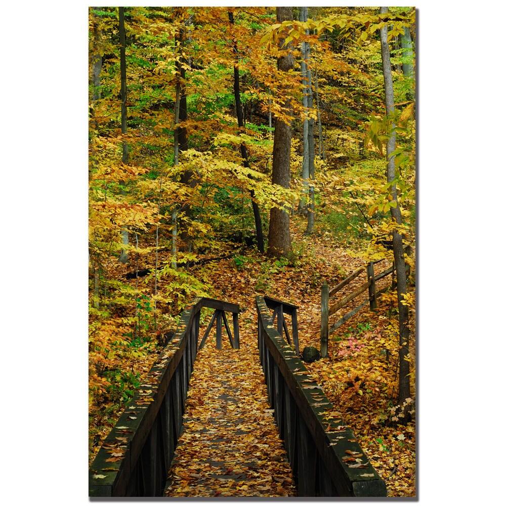 Kurt Shaffer 'Fall Bridge' Canvas Art