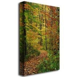 Kurt Shaffer 'Fall Trail' Canvas Art