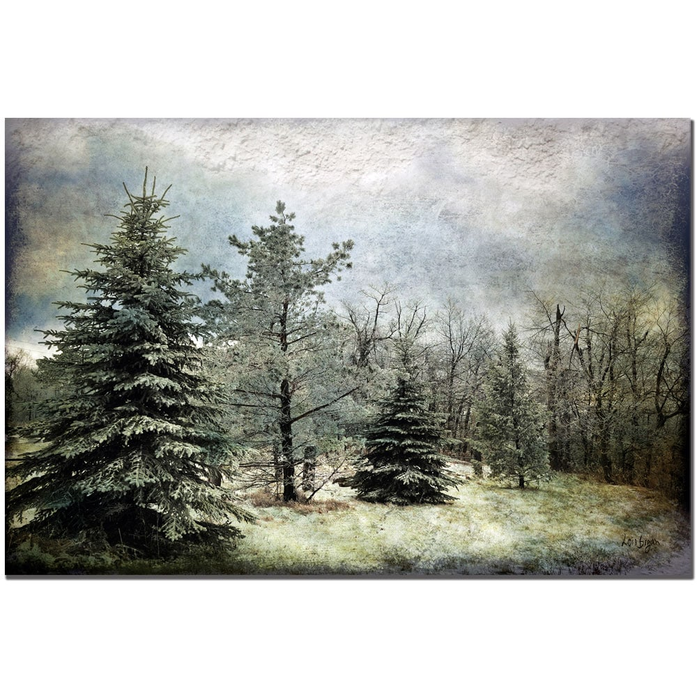 Lois Bryan 'Frosty' Gallery-Wrapped Canvas Art