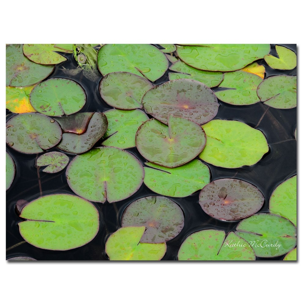 Kathie McCurdy 'Frog in the Lily Pond' Canvas Art