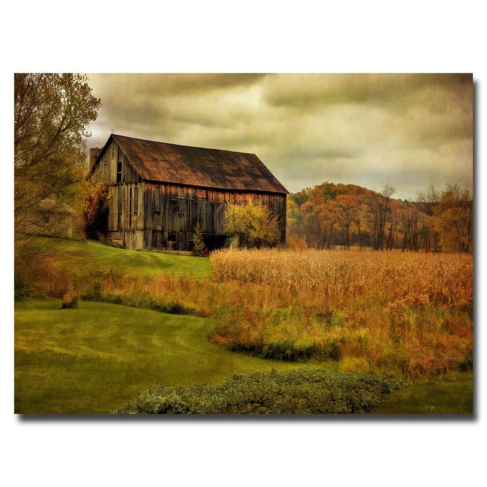 Lois Bryan \'Old Barn on Stormy Afternoon\' Medium-Sized Canvas Art ...