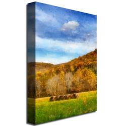 Lois Bryan 'The Harvest' Gallery-Wrapped Canvas Art