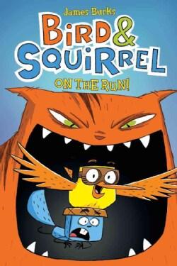 Bird & Squirrel on the Run! (Paperback)