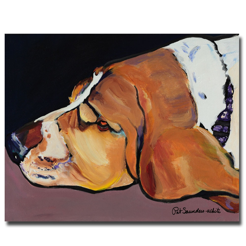 Pat Saunders-White 'Farley' Canvas Art