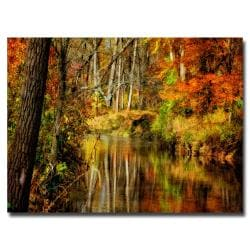 Lois Bryan 'Bob's Creek' Canvas Art