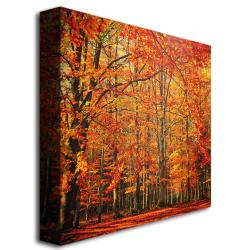 Small Philippe Sainte-Laudy 'Red November' Canvas Art - Thumbnail 1