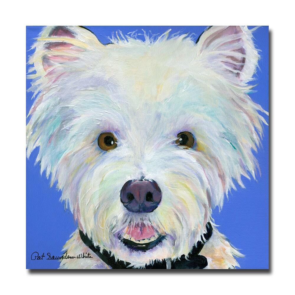 Pat Saunders-White 'Amos' Canvas Art