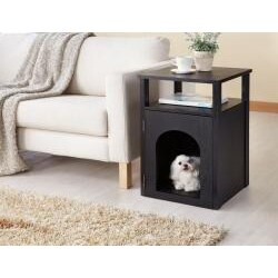 Furniture of America Pierre Home Matte Black Night Stand/ End Table