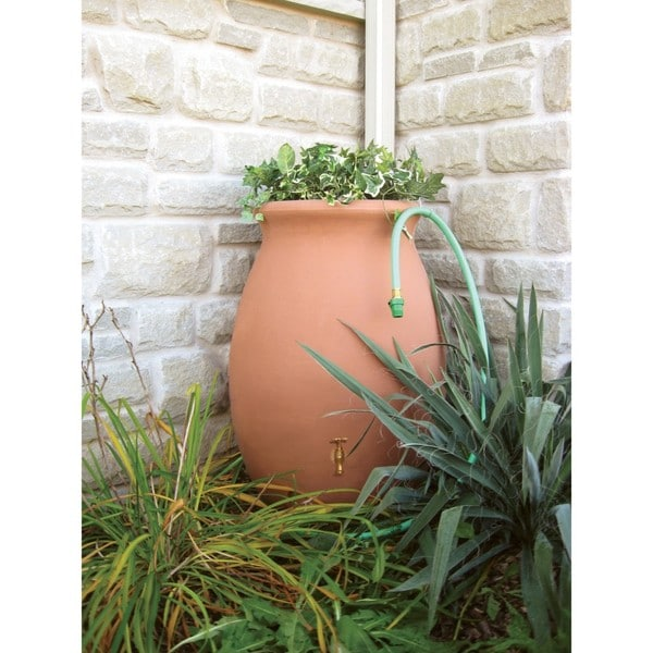 Shop Algreen Castilla Terra Cotta 50 Gallon Rain Barrel