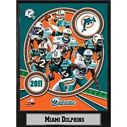 2011 Miami Dolphins 9 X 12 Team Plaque