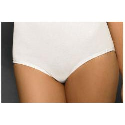 Hanes Women's All-over Control Brief (Pack of 2)