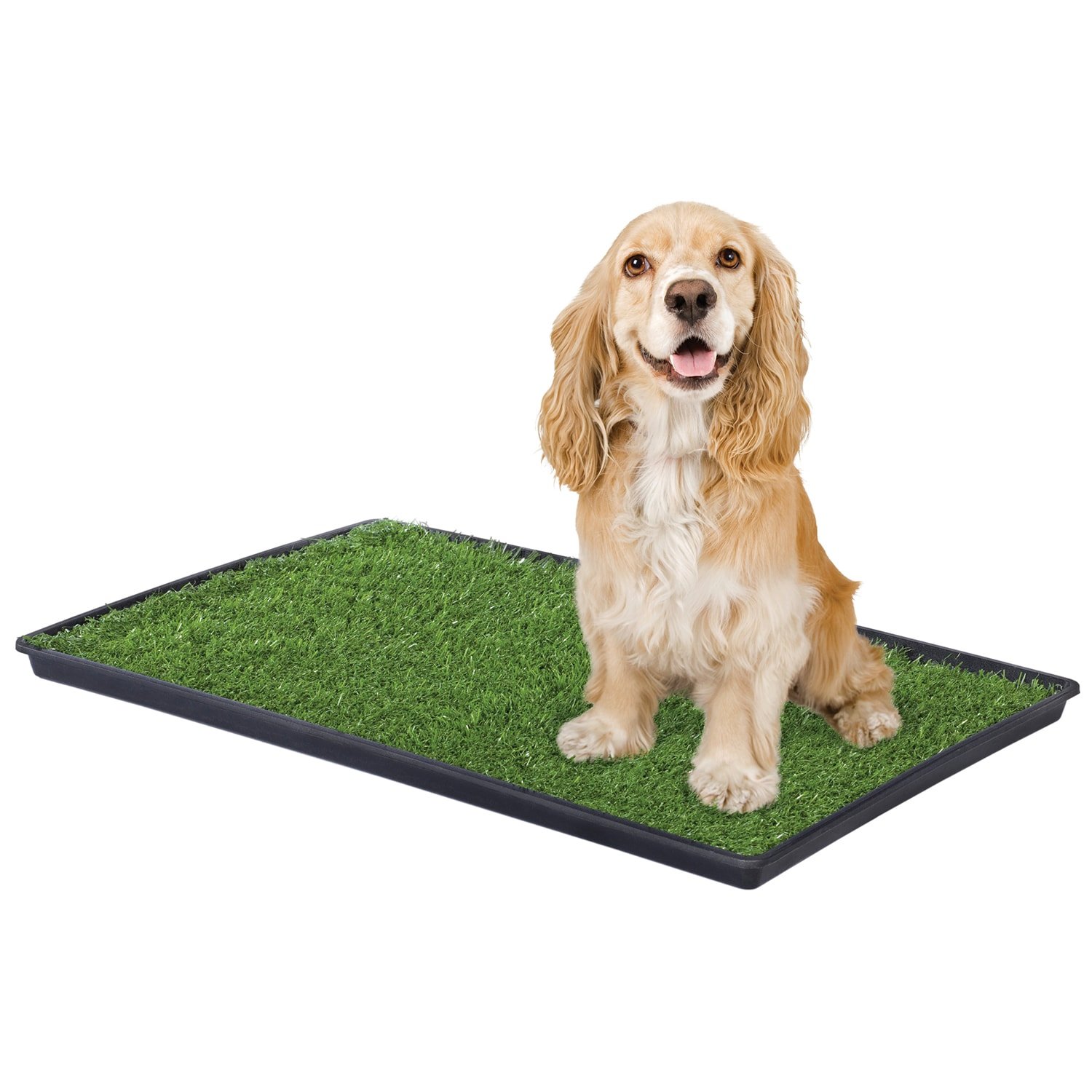 Prevue Pet Products Tinkle Turf for Medium Dog Breeds (Me...