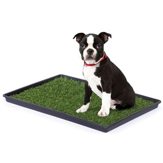 Prevue Pet Products Tinkle Turf for Small Dog Breeds