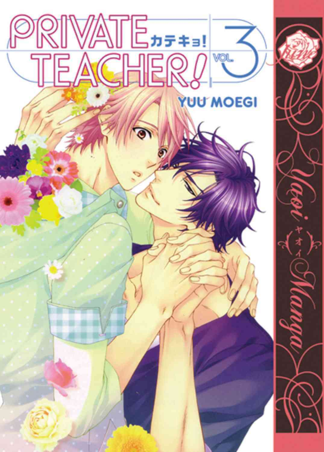 Private Teacher! 3 (Paperback)
