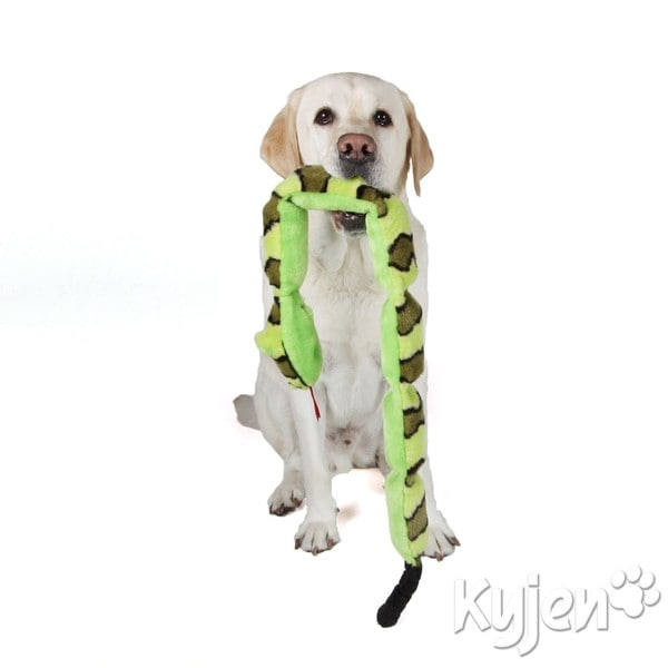 Kyjen Company Invincibles Squeak Snake and Gecko Dog Toys (Set of 2)
