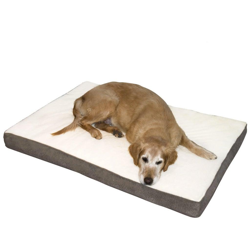 Ozzie Large Mocha Orthopedic Dog Bed