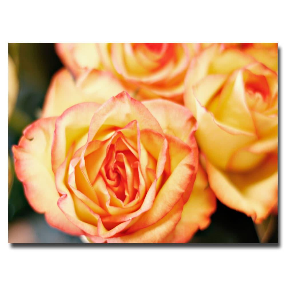 Shop Ariane Moshayedi \'Roses\' Canvas Wall Art - Free Shipping On ...
