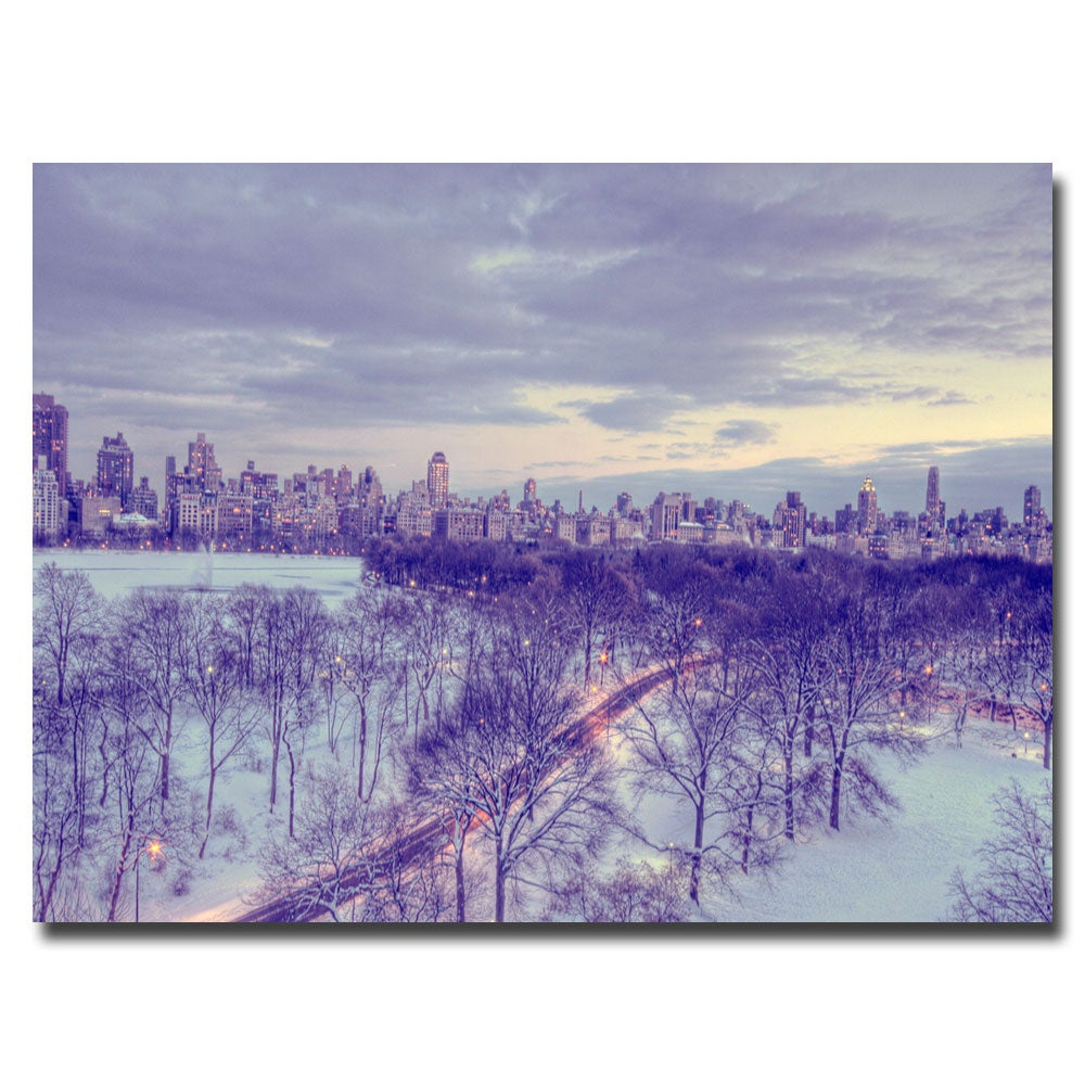 Ariane Moshayedi 'Snowy Wonderland' Contemporary Canvas Art