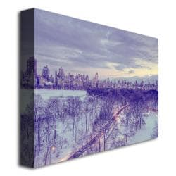 Ariane Moshayedi 'Snowy Wonderland' Contemporary Canvas Art - Thumbnail 1
