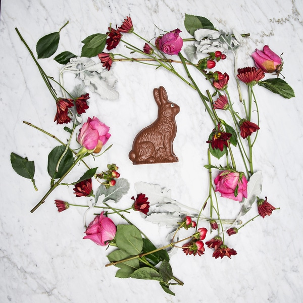Lang's Chocolates Hollow Easter Rabbit