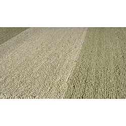 Indoor/Outdoor South Beach Sage Stripes Rug (8' x 10')