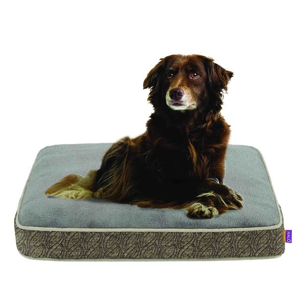 Halo Jacquard Napper Pet Bed Overstock 6589290