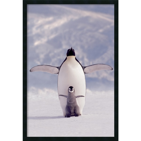 Penguin and Chick' Framed Art Print with Gel Coated Finish