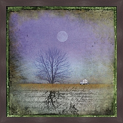 Dawne Polis 'Moonlight in Vermont' Framed Print
