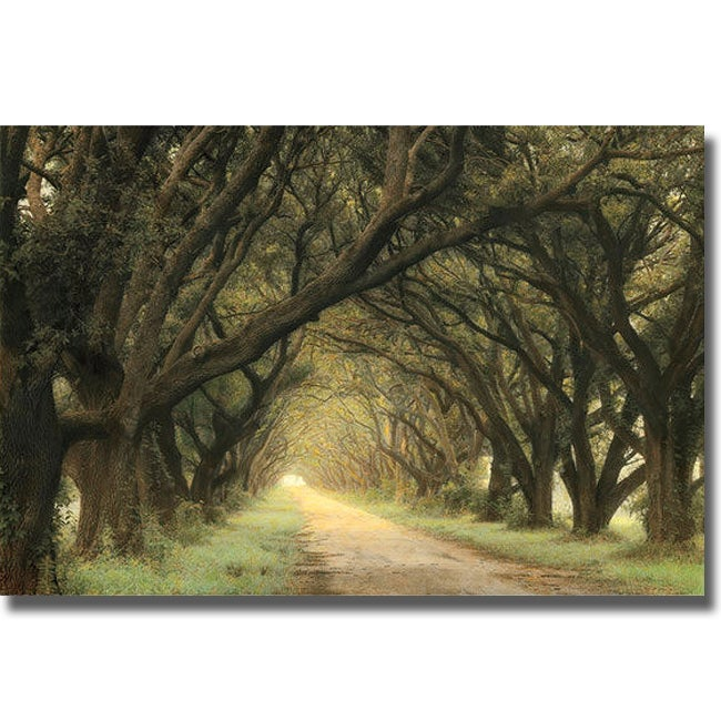 Shop William Guion \'Evergreen Alley\' Canvas Art - Free Shipping ...