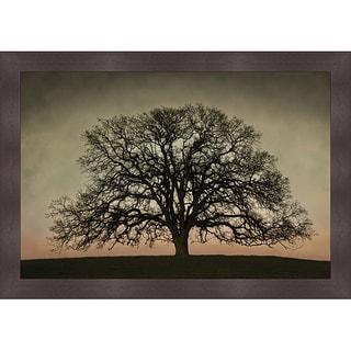 David Lorenz Winston 'Majestic Oak' Framed Print Art