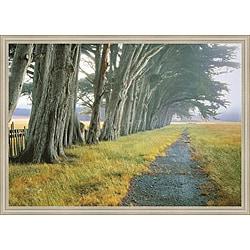 Loren Soderberg 'Eucalyptus Fog' Framed Print Art