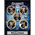 Buffalo Sabres 2010 Stat Plaque