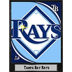 Tampa Bay Rays 9x12 Logo Plaque