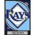 Tampa Bay Rays 9x12 Logo Plaque