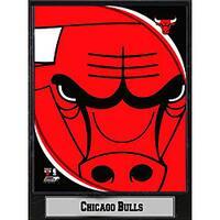 Chicago Bulls 2011 Logo Plaque