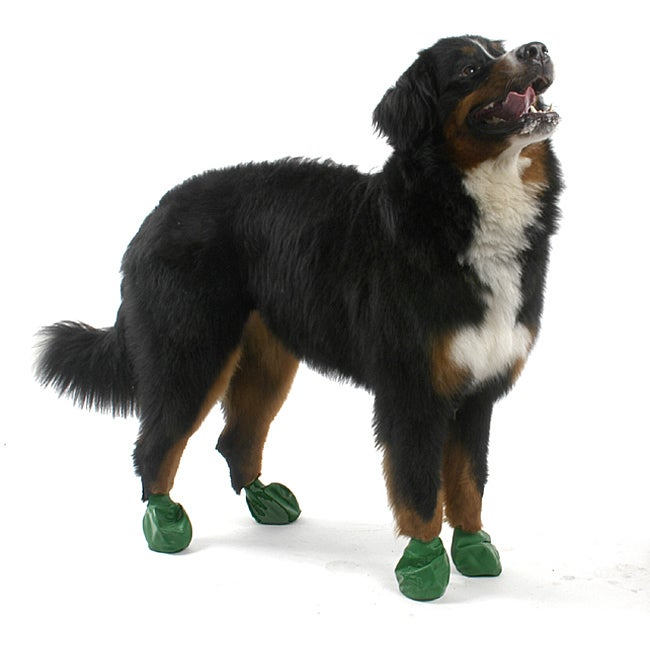 Pawz Green Extra-large Dog Booties (Pack of 12)