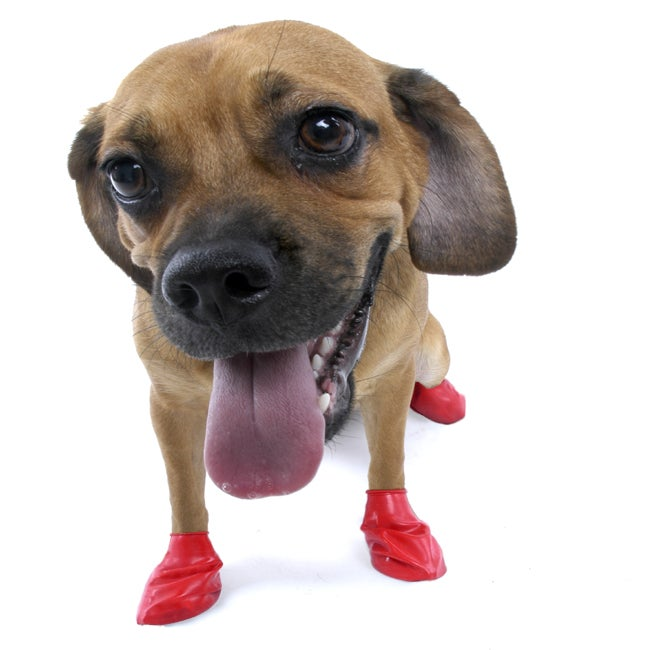 Pawz Small Red Weatherproof Rubber Protective Dog Booties (Pack of 12)