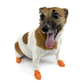 Pawz Orange Extra-small Waterproof Dog Booties (Pack of Twelve) - XS (2 options available)