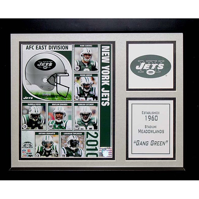 New York Jets 2010 Deluxe Stat Frame
