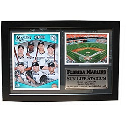 Florida Marlins 2011 Photo / Field Stat Frame