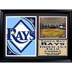 Tampa Bay Rays Team Logo Photo Stat Frame