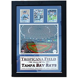Tampa Bay Rays Tropicana Field 3-card Frame