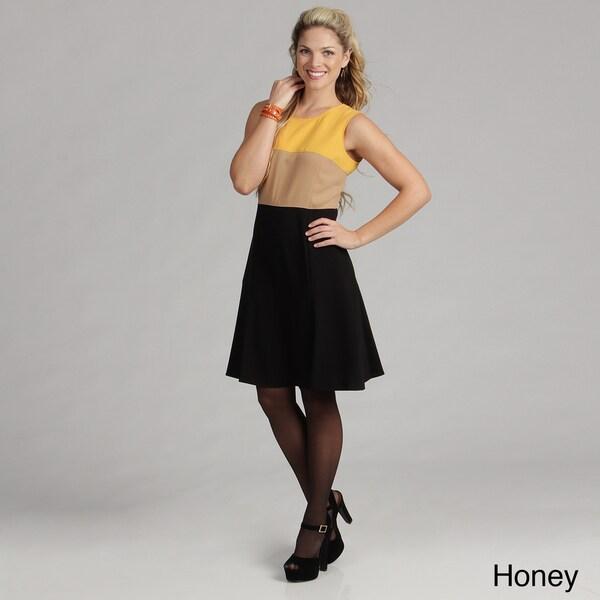 Calvin Klein Womens Colorblock Fit & Flare Dress