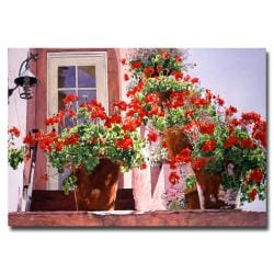 David Lloyd Glover 'Geraniums on the Stairs' Canvas Art
