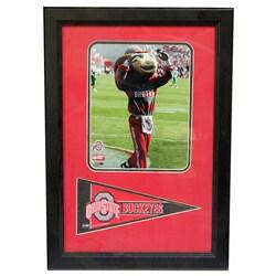 Ohio State University 'Brutus Buckeye' Pennant Frame