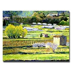 David Lloyd Glover 'Bordeaux Vineyards in Spring' Gallery-Wrapped Canvas Art