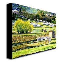 David Lloyd Glover 'Bordeaux Vineyards in Spring' Horizontal Canvas Art - Thumbnail 1