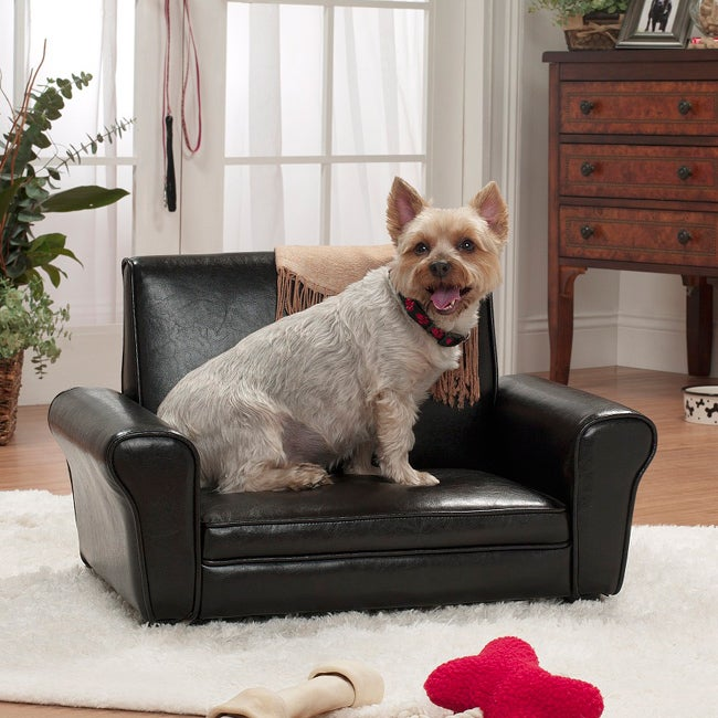 Enchanted Home Pet Brown The Club Chair