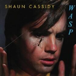SHAUN CASSIDY - WASP
