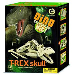 Children's Dino T-Rex Skull Plastic Excavation Kit with Tools - Thumbnail 1